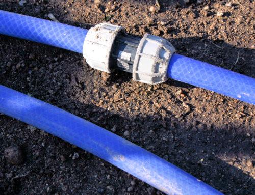 Irrigação por Gotejamento: Dobre a sua produtividade