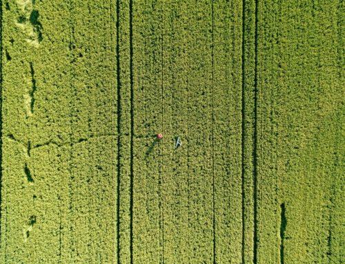 Agricultura de Precisão: saiba como a tecnologia vem revolucionando o agronegócio