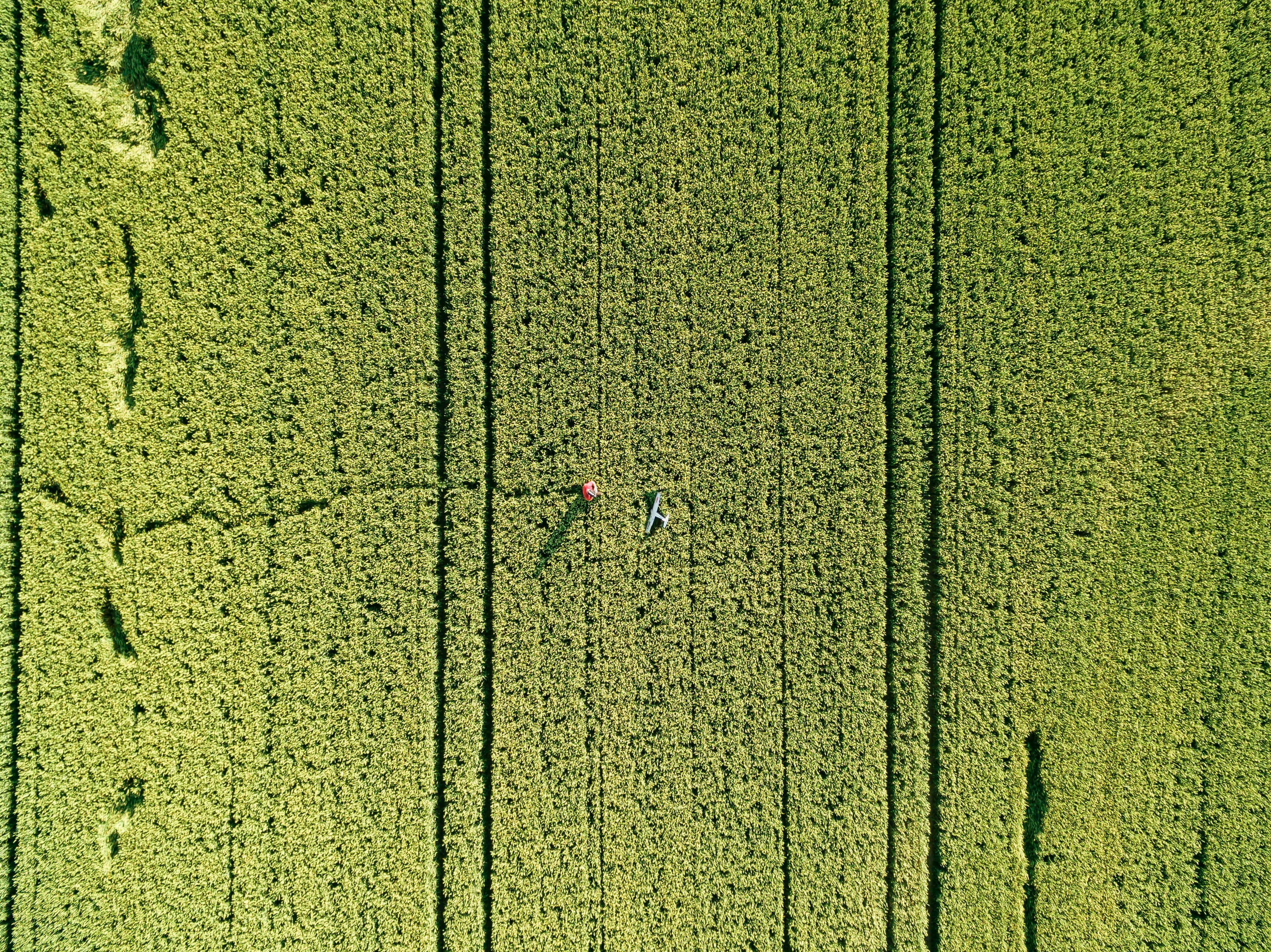 imagem feita por drone - mapeamento