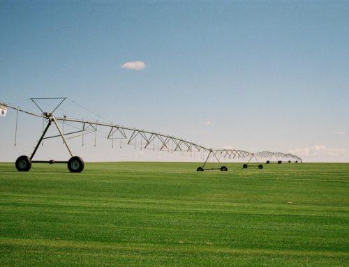 Irrigação por Aspersão: Saiba tudo sobre o principal método de irrigação