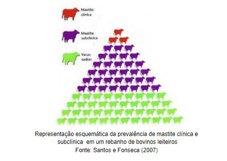 o que é a mastite bovina
