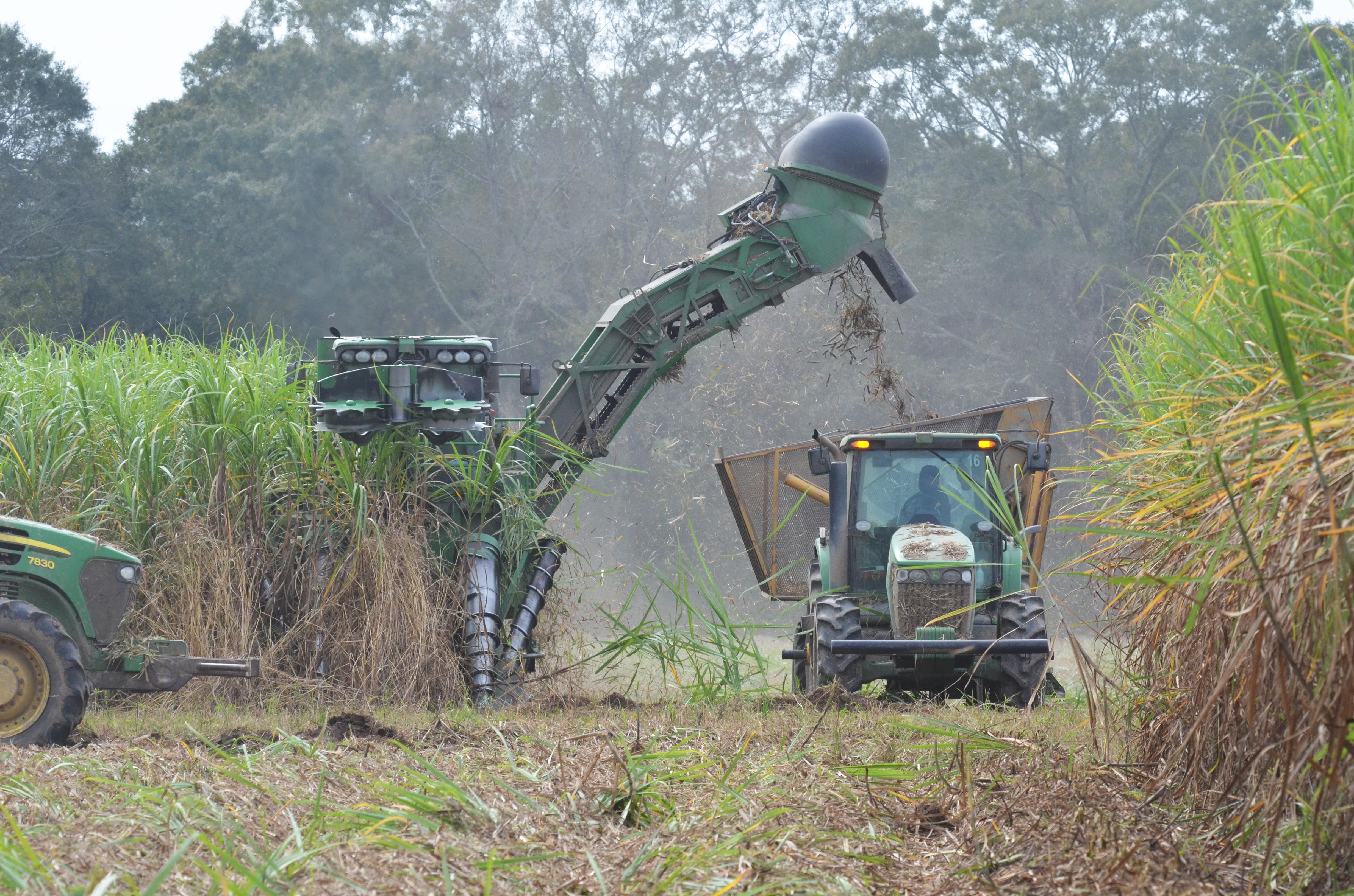 colheita mecanizada de cana AgCenter