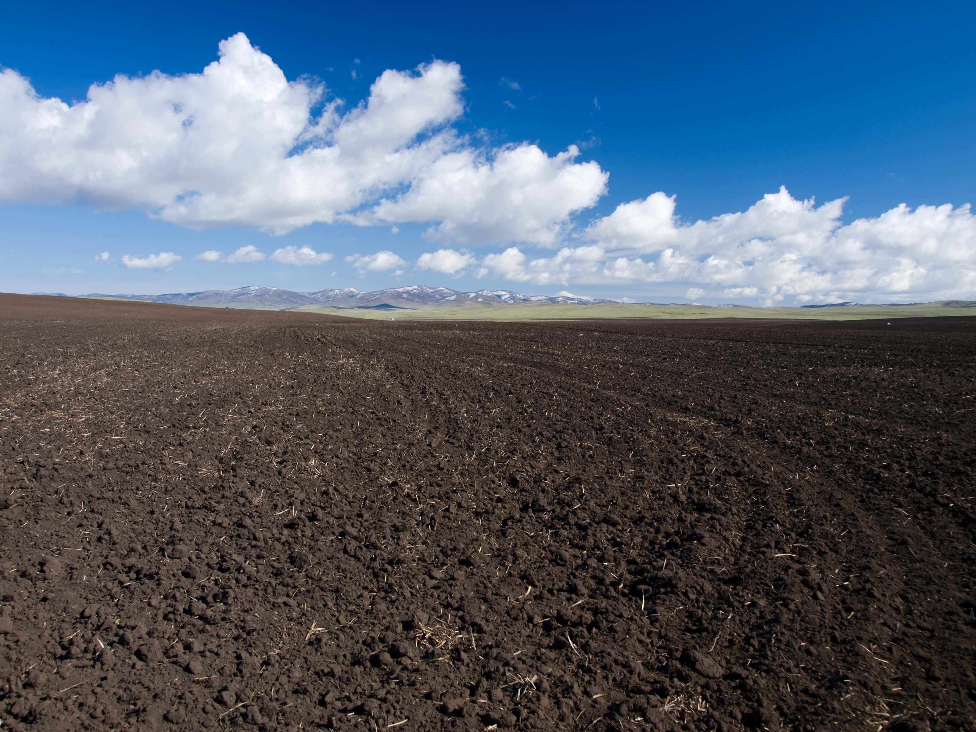 Análise do Solo: como a análise do solo ajuda o produtor
