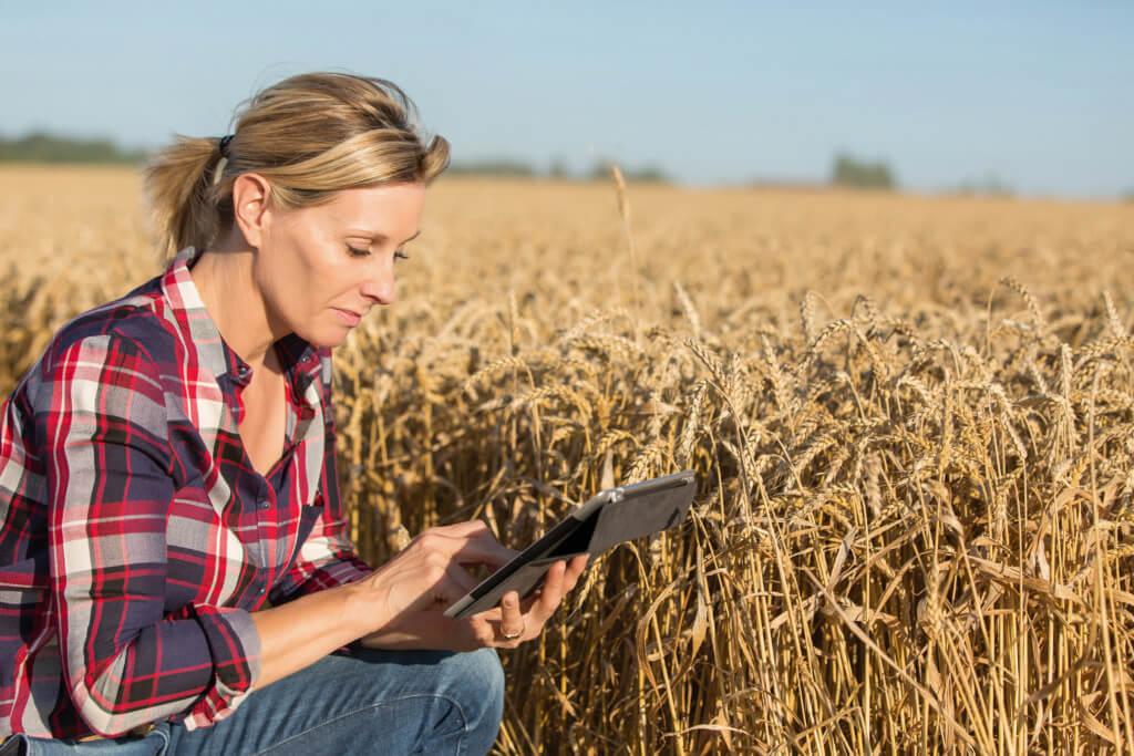 mulheres no agronegócio