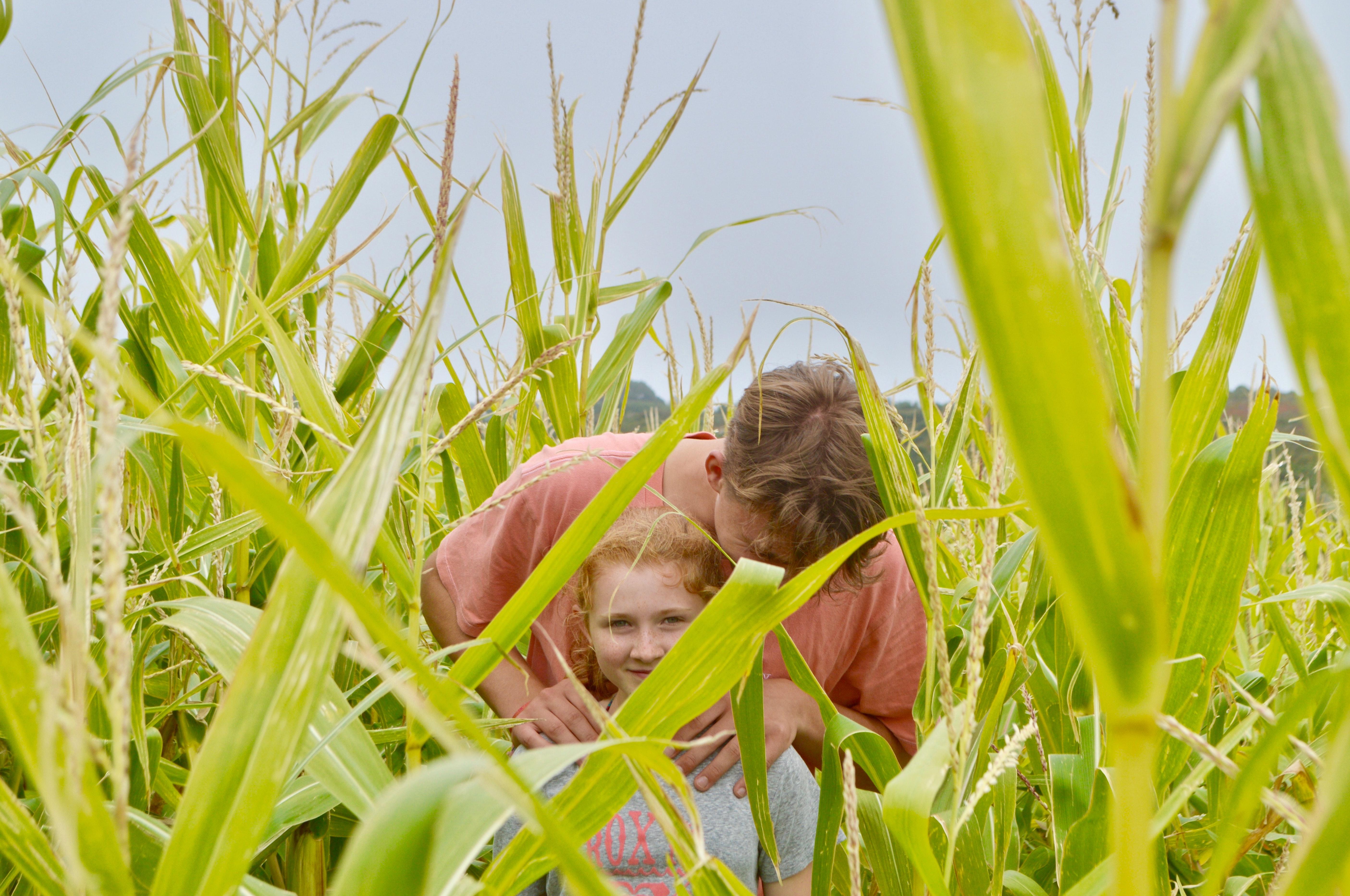 Sucessão familiar no agronegócio
