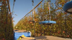drone colhedor de frutas